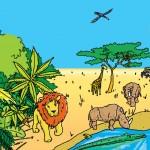 Jungle-Savanne